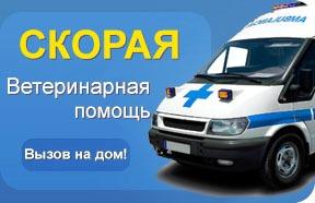 Вызов врача на дом из поликлиники красногвардейского района