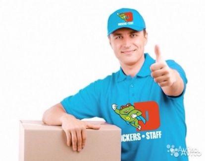 Работа в домодедово свежие вакансии грузчик комплектовщик купить авто белоруссии с пробегом частные объявления