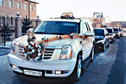 Машины для свадебного кортежа