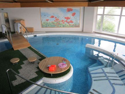 Buy cheap house with pool in San Panteleev