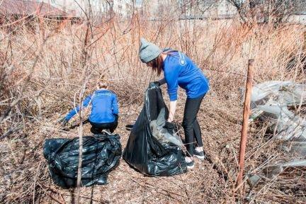 2. Расчистка территории от мусора